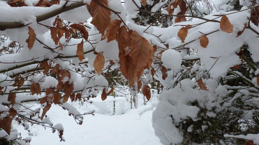 Winter 2013 2