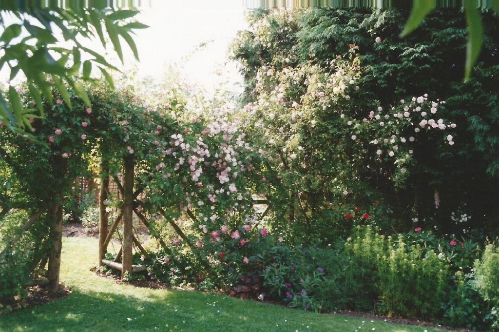 Cottage garden 2000 A