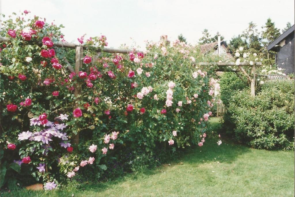 Garden 2000 C